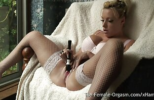 BreasProwl porno hentai español latino