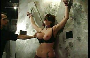 Gyno-6 porno peliculas latino